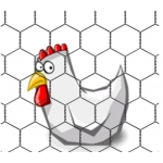 Chicken & Aviary Wire