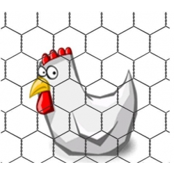 Hexagonal Chicken Wire. 25mm x 25mm x 0.8mm. 1m High X 50m Long