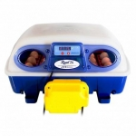 24 Egg Incubator Automatic Turning. Borotto Real 24.