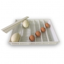 Universal Egg Tray - for all Brinsea OvaEasy Incubators