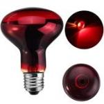 Infra Red Lamp / Bulb. 60 Watt