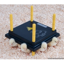 Chick Heat Plate / Electric Hen For 15 - 20 Chick