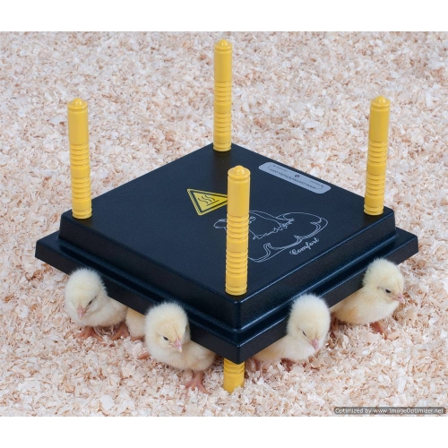Chick Heat Plate Electric Hen For 15 20 Chick