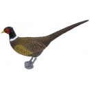 Pheasant Decoy. Full Size. Standing.