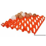 Egg Tray. Plastic to hold 30 eggs.