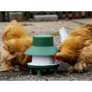 6kg Outdoor Blenheim Poultry Feeder