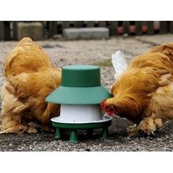 6kg Outdoor Blenheim Poultry Feeder