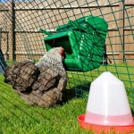 Wise Poultry Feeder. 5kg Cage Mounted.
