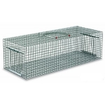 Pigeon Cage Trap.