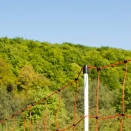 50m x 90cm Orange Electric Sheep Netting.