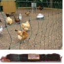 25m x 1.2m High Green Hotline Electric Poultry Netting with posts. No stock until 14th April