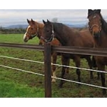 Electric Horse Fencing