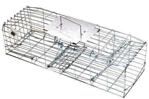 Squirrel Cage Trap Double Entry