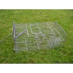 Family Rat Cage Trap