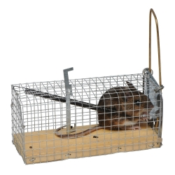 Mouse Cage Trap.