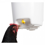 Poultry Nipple & Cup Drinkers