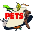 Pet Food & Pet Supplies