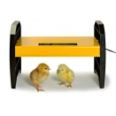 EcoGlow 20 Chick Brooder.