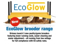 New Range of Brinsea EcoGlow Brooders for sale.