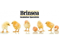 Brinsea Incubator Parts For Sale