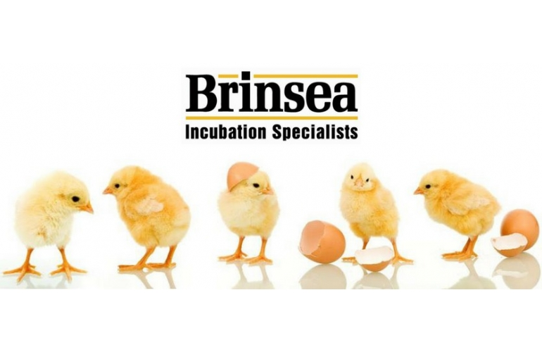 Brinsea Incubator Parts
