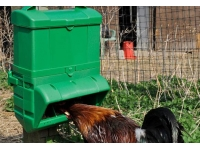 Wise Feeders for Poultry in 5 Kg & 10 Kg Capacity for all Farm Fowl.